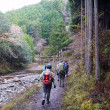 青春18きっぷで京都一周トレイルへ  渡月橋から高雄へ