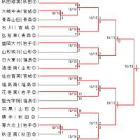2018各地区秋季高校野球大会案内板(11/13終)