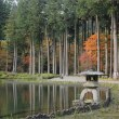 古峯(こほう)園の秋ふたたび・2 ~水辺の紅葉