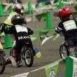 「幼児用自転車競技」 と 「箕面ホタル観察会」