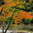 紅葉と水神  東の滝