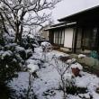 初雪(●^o^●)