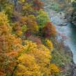 秋深まる季節(Ⅶ)