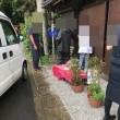 子猫,住んでいない店舗の雨戸に閉じ込められて・・・沢山の方達が駆けつけて助け出されました