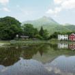 由布院温泉の田園風景
