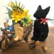 黒猫 テンちゃん