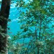 クロアチア⑦(ブレッド湖)