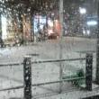 東京 大雪! 駄目だこりゃー!
