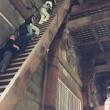 奈良プチ観光〜東大寺