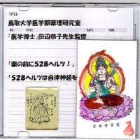 ゼロ磁場 西日本一 氣パワー開運引き寄せスポット 護摩祭りで田辺博士監修のCD祈祷(3月5日)