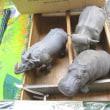 20171105大江戸骨董市@有楽町・東京国際フォーラム/Oedo Antique Market