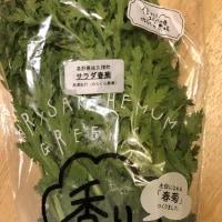 日替りマルシェ「秋の菊菜と白菜」♪