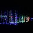 万博公園に行ってきました。