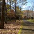 滝野公園 秋深まる