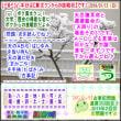 (文学・歴史)[古事記]通算353回【算太クンからの挑戦状・2019】