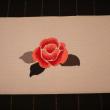薔薇LOVE~~ 深紅の薔薇が咲きました。