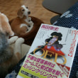 積ん読本と犬