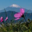 17/Nov 雪化粧の富士山