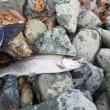 素人でも釣れる?!リヴァスポット早戸で釣り体験。