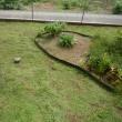 覚悟の草刈り