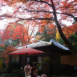 日本の美しい風景 平林寺の紅葉