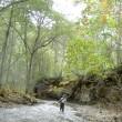ヒグマの巣窟、初秋の54cmアメマス。
