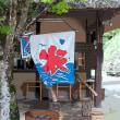 香嵐渓の青モミジ その5