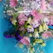 4月20日 明日の誕生花・ゆかりの花 花言葉は?(*^O^*)☆