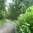 林道32キロ走 その3