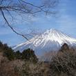 富士山裾の道・・田貫湖の逆さ富士