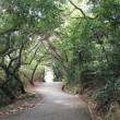 岡山・直島旅行・15