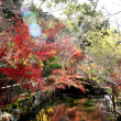古刹  観心寺の紅葉