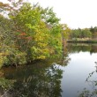 八方湖紅葉!