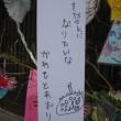 柳井市白壁の町並み 七夕祭り2018