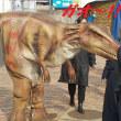 歩く恐竜・・・?
