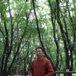 森の中で『木挽きのほほえみ』