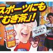 ★本日の五郎谷とむぎ茶229★