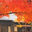 秋彩のいおり。
