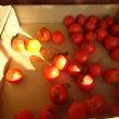 柿を・・・・