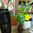花の食卓~ソーセージも花模様♪
