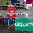新潟シティマラソン2017を終えて