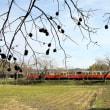 秋の里山トロッコ列車