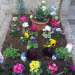 花植え ‐ 自宅マンション