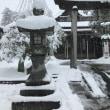 大雪ですね~