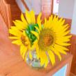 ひまわり♡…そして、花を食べる(笑)