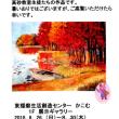 「油彩絵画教室」 で学ぶ吾らの作品展を紹介です・・・