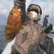 1/21:荒れ模様のため青物早めに切り上げ近場で根魚狙いもアコウにウッカリカサゴにホウボウ等バッチリOK*^^*)