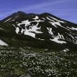 6月の鳥海山