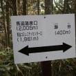 瀞台(273m)