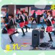 熊本城マラソン2018٩( ''ω'' )و